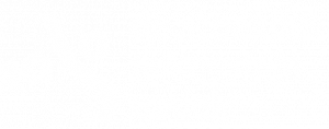 logo sf wit